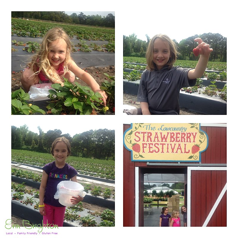 Low Country Strawberry Festival, South Carolina