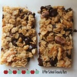Homemade Chocolate Chip Granola Bars