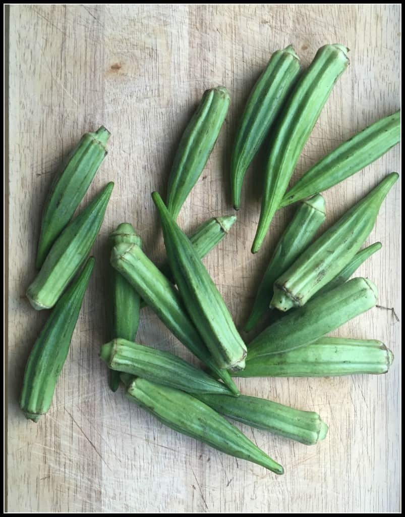 North Carolina Okra