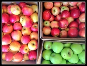 Bushels of North Carolina Apples