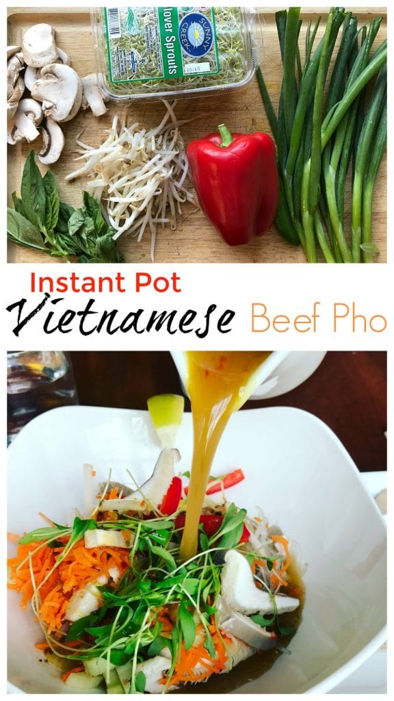 Instant Pot Vietnamese Beef Pho || Erin Brighton | gluten free | dinner | pressure cooker | Got To Be NC